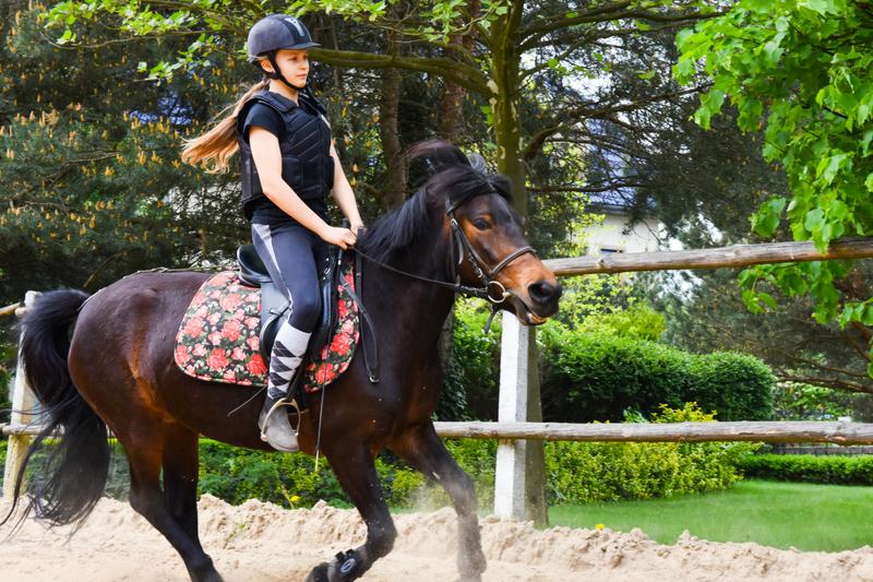Wakacyjne karnety na jazdę konną